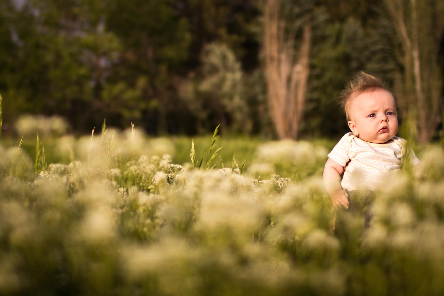 Baby portrait by Boulder family photographer D'Antonio Photography